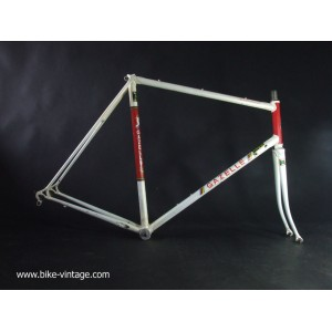 GAZELLE champion mondial frame and fork Reynolds 531 Vintage